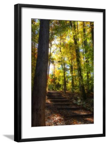 Autumn Light II-Alan Hausenflock-Framed Art Print