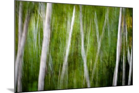 Green Abstract I-Beth Wold-Mounted Photographic Print