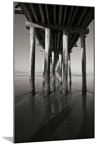 Pier Pilings 16-Lee Peterson-Mounted Photographic Print