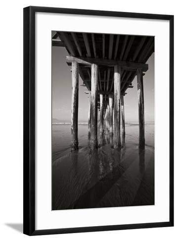 Pier Pilings 16-Lee Peterson-Framed Art Print