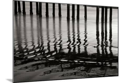 Pier Pilings 14-Lee Peterson-Mounted Photographic Print
