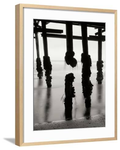 Pier Pilings 10-Lee Peterson-Framed Art Print
