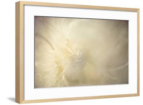 Inner Radiance-Roberta Murray-Framed Art Print