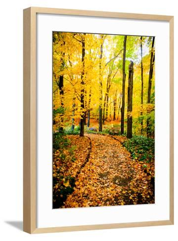 Autumn Pathway IV-Beth Wold-Framed Art Print
