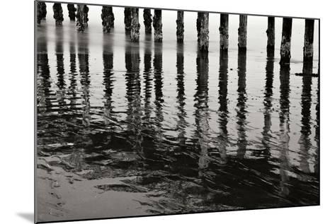Pier Pilings 15-Lee Peterson-Mounted Photographic Print