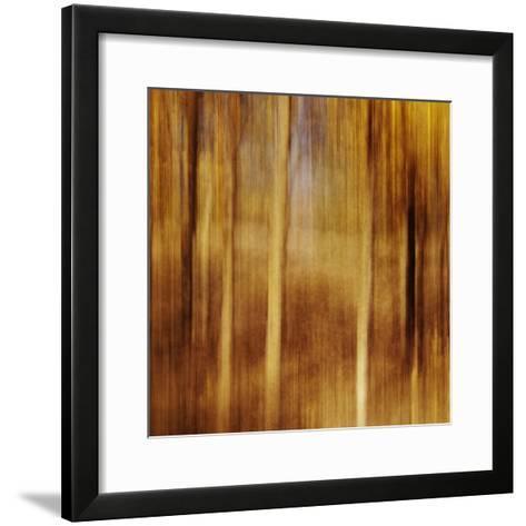 Sweeping Souls-Roberta Murray-Framed Art Print