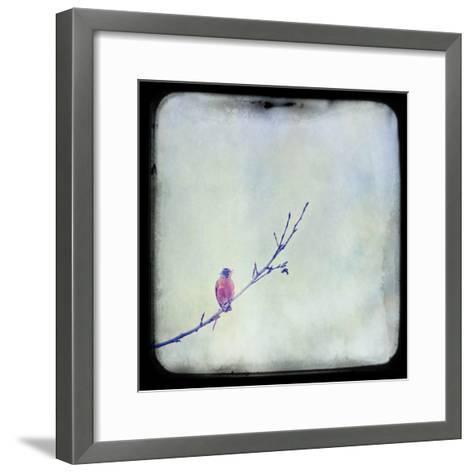 I Sing Alone-Roberta Murray-Framed Art Print