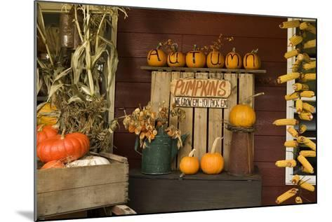 Autumn Harvest III-Philip Clayton-thompson-Mounted Photographic Print