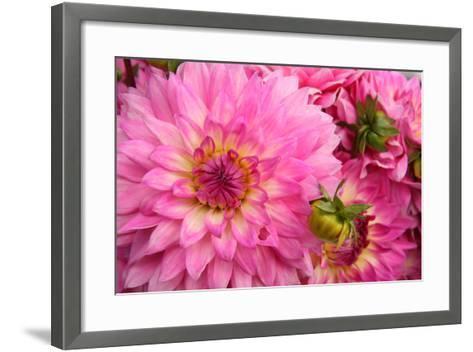 Spring Garden II-Maureen Love-Framed Art Print