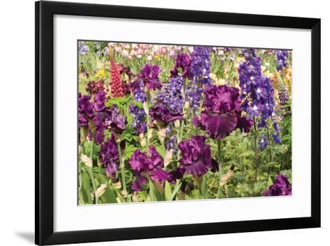 Purple Garden II-Maureen Love-Framed Art Print