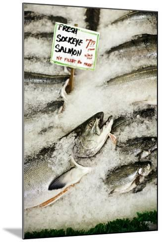 Fresh Seafood II-Bob Stefko-Mounted Photographic Print