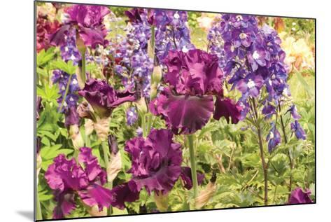 Purple Garden I-Maureen Love-Mounted Photographic Print