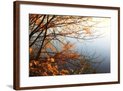 Leaves of Orange I-Alan Hausenflock-Framed Art Print