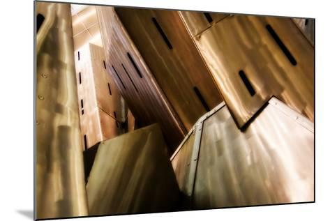 Burnished Modern IV-Alan Hausenflock-Mounted Photographic Print