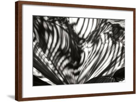 Palm of Shadows-Alan Hausenflock-Framed Art Print