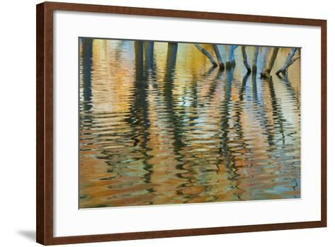Lake Powell Reflections I-Kathy Mahan-Framed Art Print