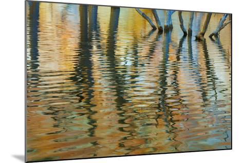 Lake Powell Reflections I-Kathy Mahan-Mounted Photographic Print