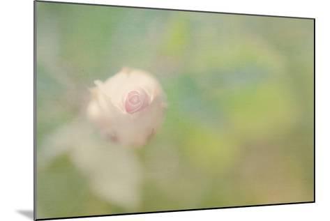 One Love-Roberta Murray-Mounted Photographic Print