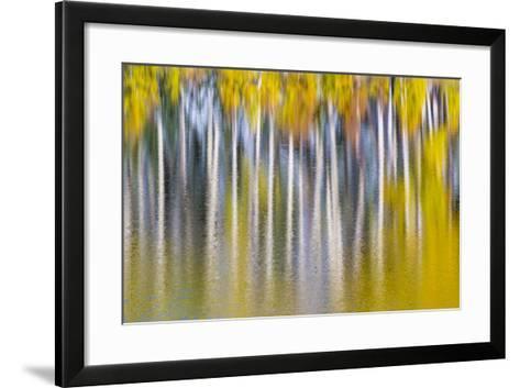 Reflections of Fall II-Kathy Mahan-Framed Art Print