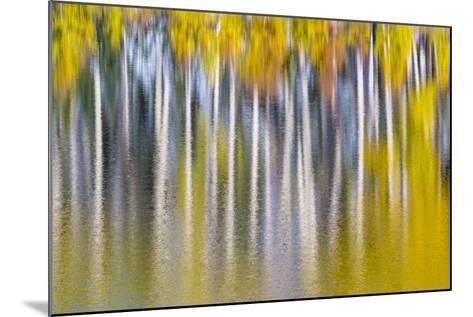 Reflections of Fall II-Kathy Mahan-Mounted Photographic Print