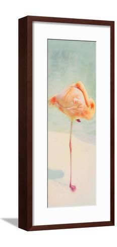 Resting Flamingo Panel-Roberta Murray-Framed Art Print
