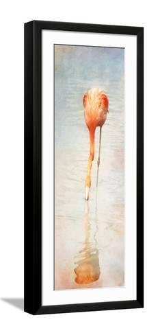 Homage to Audubon Panel-Roberta Murray-Framed Art Print