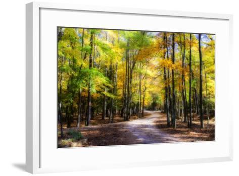Goose Pond Lane II-Alan Hausenflock-Framed Art Print
