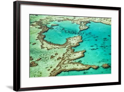 Great Barrier Reef III-Larry Malvin-Framed Art Print