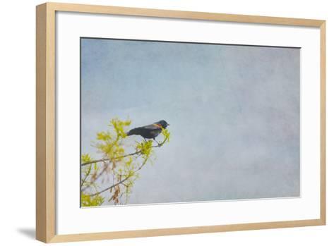 Sing About-Roberta Murray-Framed Art Print