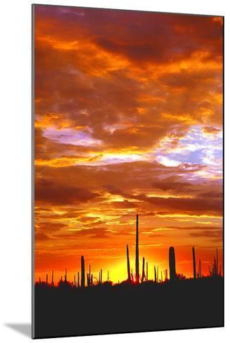 Sky a Fire I-Douglas Taylor-Mounted Photographic Print