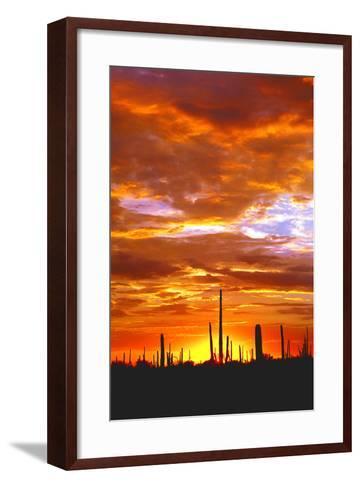Sky a Fire I-Douglas Taylor-Framed Art Print