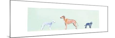 Dogs Panel I-Debbie Nicholas-Mounted Photographic Print