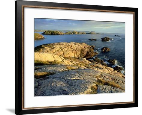 Coast at Sheigra in Evening Light, Scotland-Iain Sarjeant-Framed Art Print