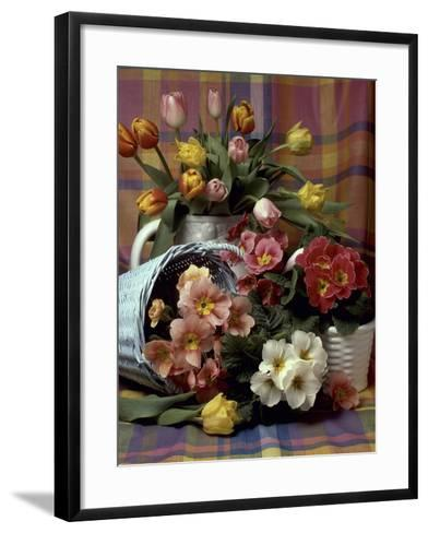 Primula and Tulipa, Vase and Basket on Ckecked Material-Erika Craddock-Framed Art Print