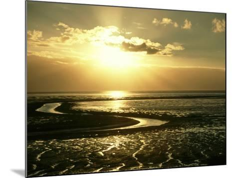The Wash at Sunset, View Across Mudflats and Channels Snett Isham, North Norfolk-Mark Hamblin-Mounted Photographic Print