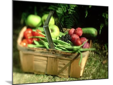 Fruit and Vegetables from the Garden, Kent-David Tipling-Mounted Photographic Print