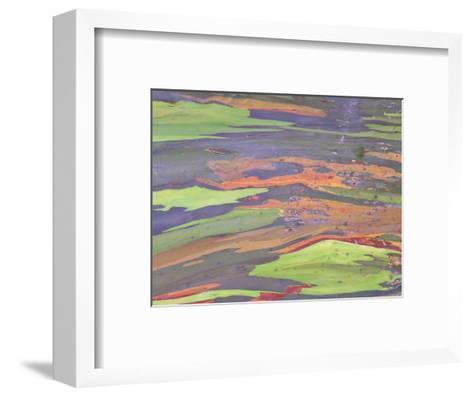 Rainbow Eucalyptus, Bark Pattern, Botanical Garden-Stan Osolinski-Framed Art Print