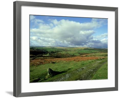 Dartmoor, Devon-David Cayless-Framed Art Print