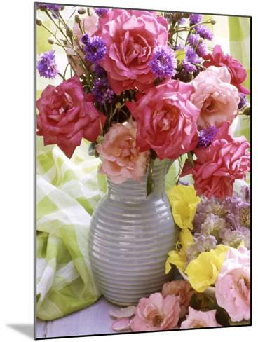 Rosa (Mixed) & Centaurea in Blue Jug-Lynne Brotchie-Mounted Photographic Print