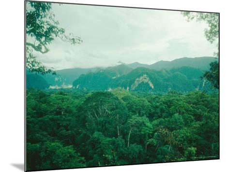 Mulu National Park, Borneo, Weather Time-Lapse, 6Pm-Rodger Jackman-Mounted Photographic Print