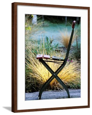 Chair (Bandstand) with Stipa Arundinacea (Pheasant Grass)-Lynn Keddie-Framed Art Print