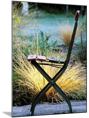 Chair (Bandstand) with Stipa Arundinacea (Pheasant Grass)-Lynn Keddie-Mounted Photographic Print
