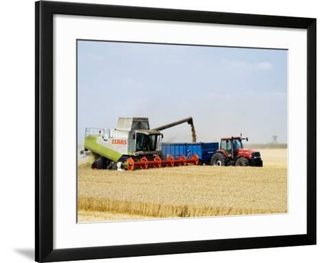 Combine Harvester Unloading Grain into Trailer, England-Martin Page-Framed Art Print