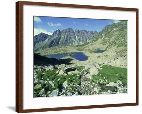 High Tatra Mountains National Park, Slovakia-Richard Packwood-Framed Art Print