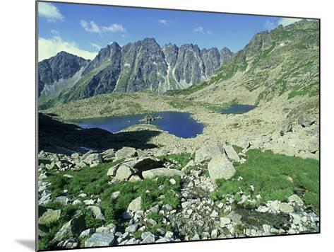 High Tatra Mountains National Park, Slovakia-Richard Packwood-Mounted Photographic Print