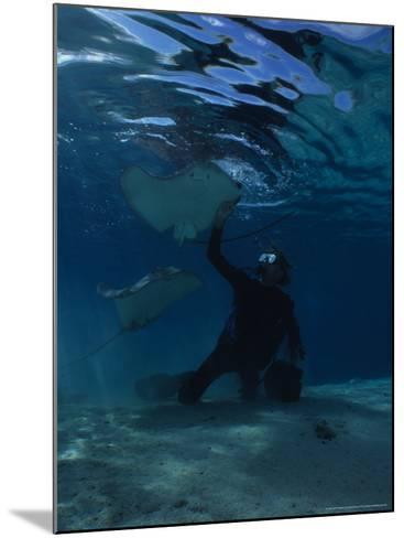 Hawai Sting Ray, with Diver, Polynesia-Gerard Soury-Mounted Photographic Print