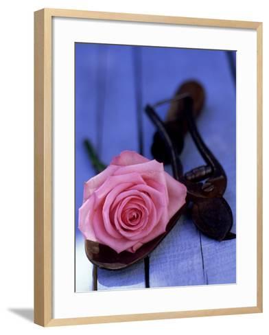 Summer Still Life Outdoors, Single Stem of Pink Rosa (Rose) Resting on Hand Trowel-James Guilliam-Framed Art Print