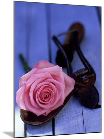 Summer Still Life Outdoors, Single Stem of Pink Rosa (Rose) Resting on Hand Trowel-James Guilliam-Mounted Photographic Print