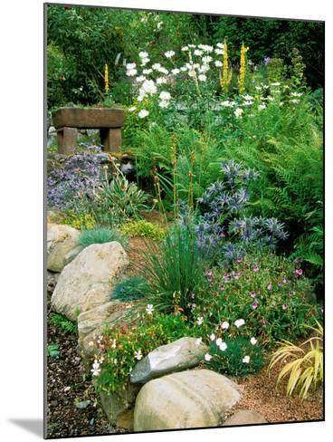 Garden Situated on a Hillside Overlooking Loch Ness, Scotland-Lynn Keddie-Mounted Photographic Print