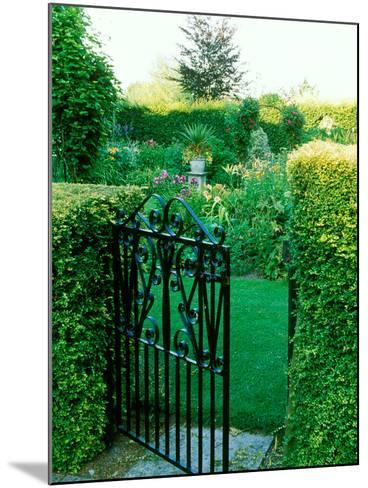 Large Cottage Style Garden, with Colourful Herbaceous Borders-Lynn Keddie-Mounted Photographic Print